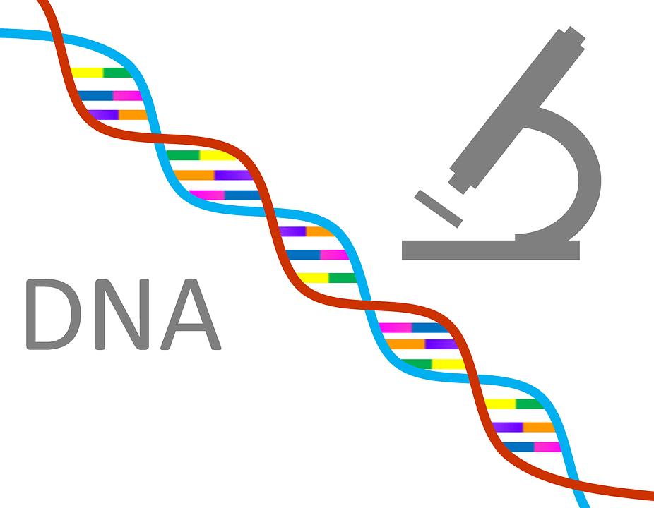 DNA-Strang und Mikroskop