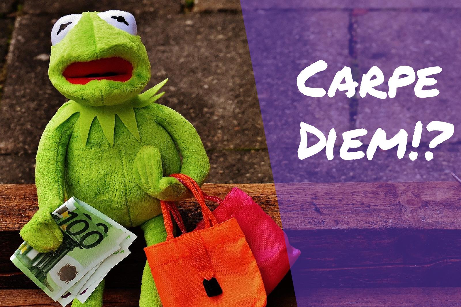 Frosch auf Einkaufstour