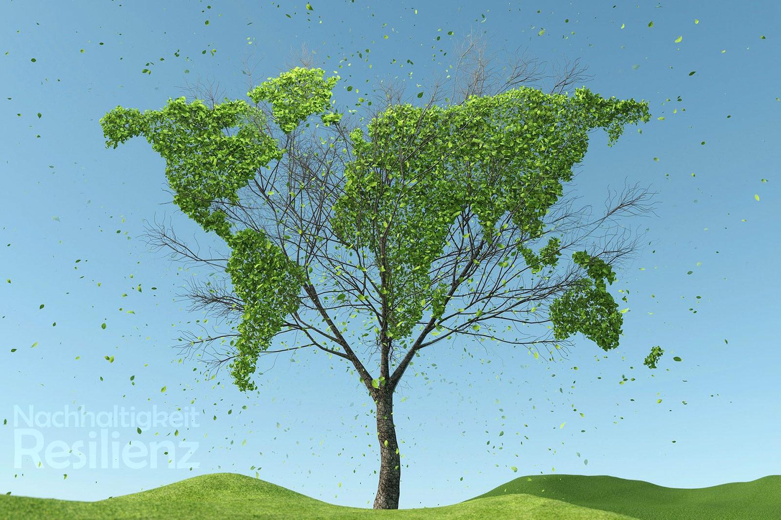 Nachhaltigkeit und Resilienz als Ziele